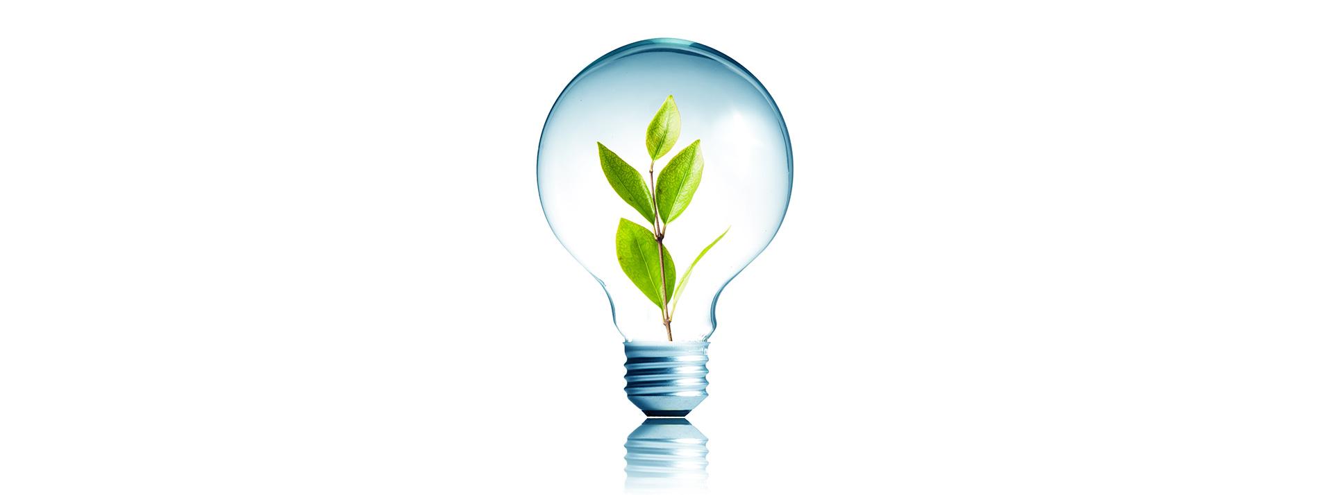 greenway_logistics_innovatie